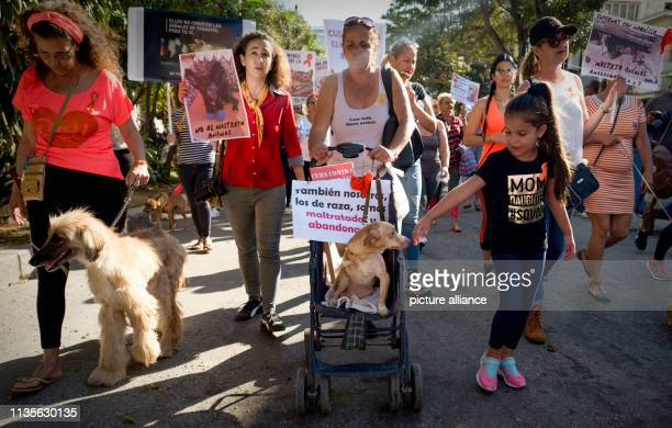 April 2019, Cuba, Havanna: About 400 people with their dogs take part in a demonstration against cruelty to animals. Photo: Eliana Aponte/dpa