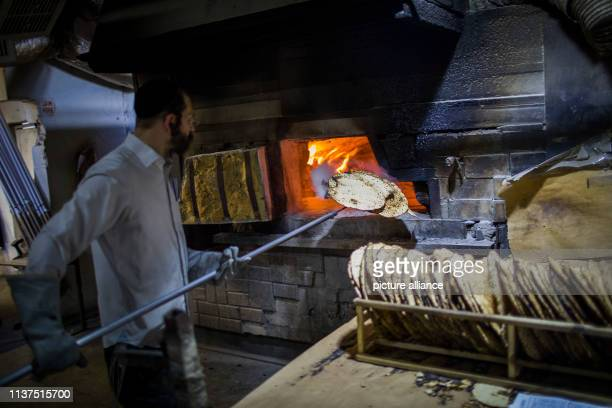 An UltraOrthodox Jewish man prepares matza a traditional unleavened flatbread eaten during the upcoming Jewish holiday of Passover which begins on...