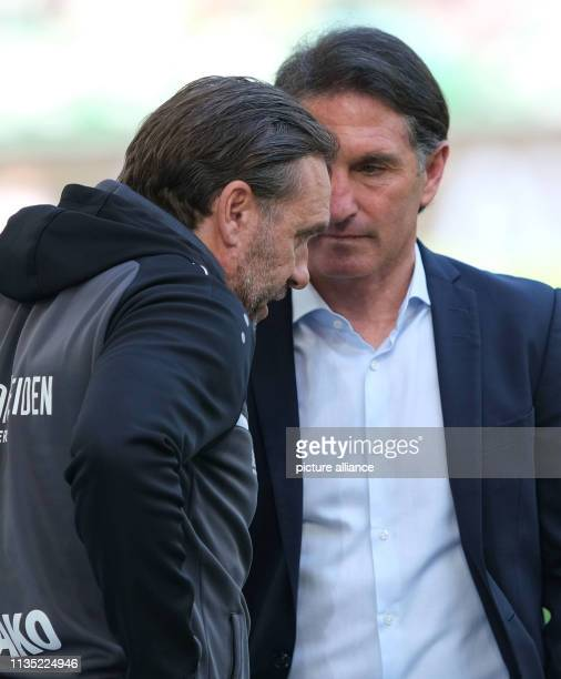 Soccer Bundesliga 28 Matchday VfL Wolfsburg Hannover 96 in the Volkswagen Arena Hanover coach Thomas Doll and Wolfsburg coach Bruno Labbadia are...