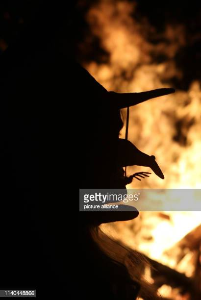 The silhouette of a witch with a hat and a crooked long nose stands out against the Walpurgis fire Tens of thousands of witches and devils have been...