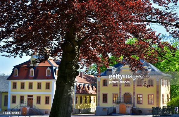 April 2019, Thuringia, Weimar: The sun shines over the Beethoven House and the Bach House of Belvedere Palace. The baroque summer residence of the...
