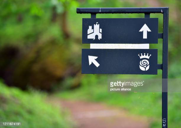 April 2020, Thuringia, Eisenach: Signposts show the way to Wartburg Castle and the Elisabeth Plan, where St. Elisabeth probably founded a hospital in...