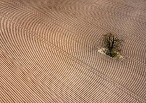 DEU: Line Patterns On A Field