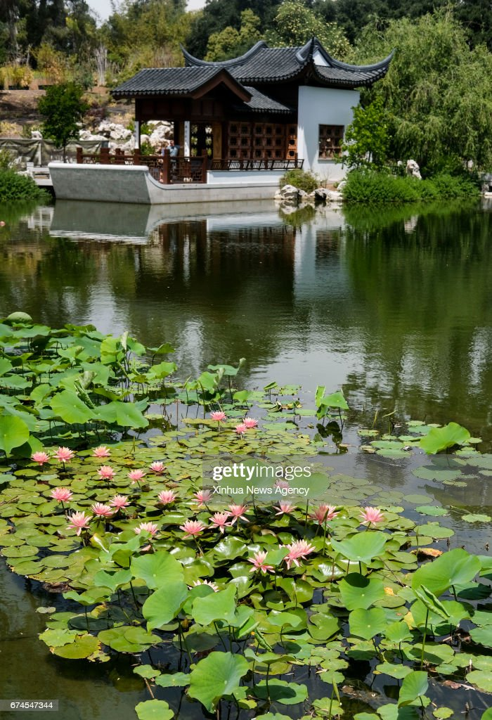 LOS ANGELES, April 27, 2017 -- A view of the Chinese garden Liu Fang ...