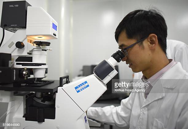 GUANGZHOU April 7 2016 Associate Prefessor Huang Junjiu also a genefunction researcher makes experiments at Sun Yatsen University in Guangzhou...