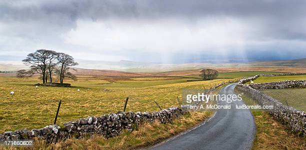 April Storm, Catrigg Pasture, Yorkshire Dales