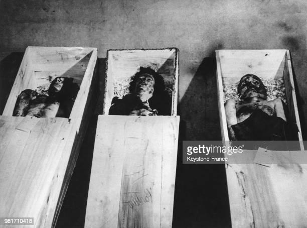 Après la pendaison les corps de Benito Mussolini et de sa maîtresse Clara Petacci sont placés dans des cercueils devant lesquels les italiens...