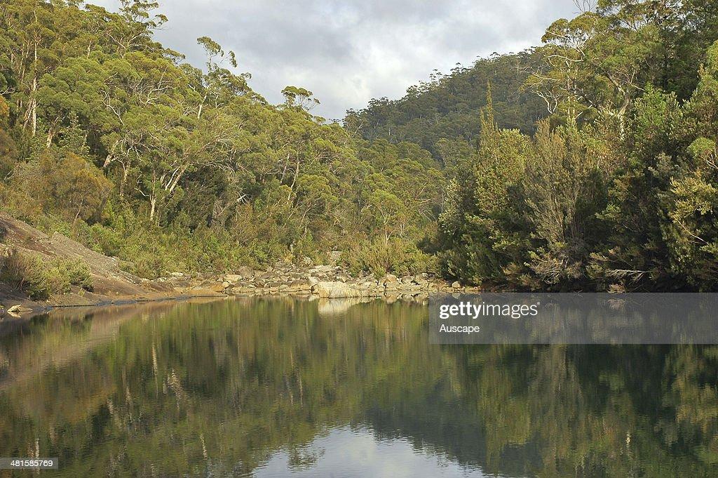 Apsley River, Tasmania, Australia : News Photo
