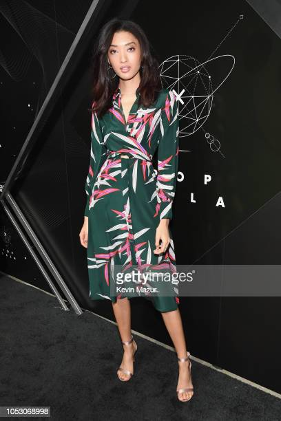 Aqua Parios attends the Pencils of Promise 10th Anniversary Gala at the Duggal Greenhouse on October 24 2018 in New York City