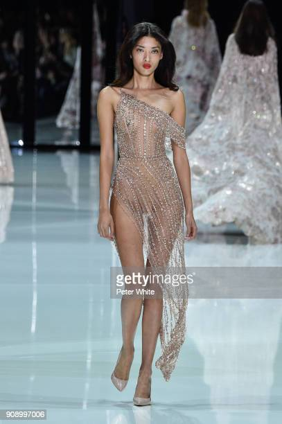 Aqua Parios walks the runway during the Ralph Russo Spring Summer 2018 show as part of Paris Fashion Week on January 22 2018 in Paris France
