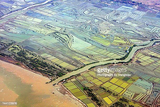 aquacultural farmlands - llanura costera fotografías e imágenes de stock