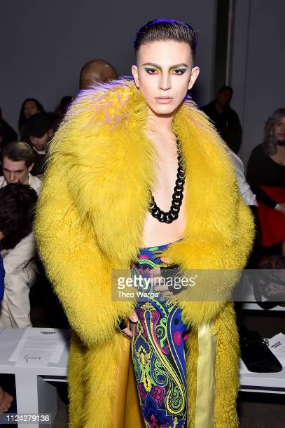 Aquaria attends the Christian Cowan front row during New York Fashion Week The Shows at Gallery II at Spring Studios on February 12 2019 in New York...