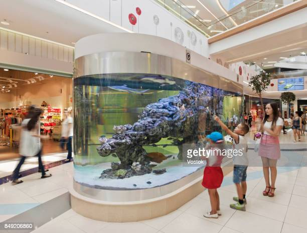 Aquarium in the largest modern shopping Mall in Almaty