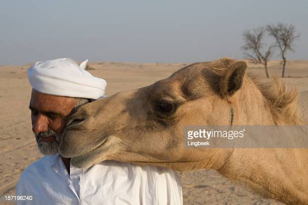 arab man 、キャメル - アブダビ アルアイン市 ストックフォトと画像