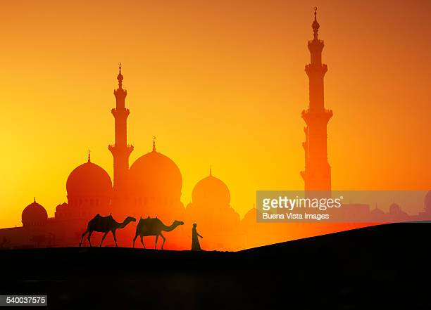 Arab man with camels and mosque at sunset