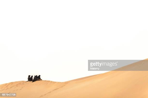 Arab veiled woman sitting on a sand dune in the desert