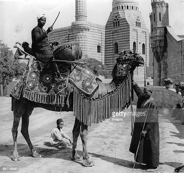 Arabian weddingminstrel on a richly decorated camel Photograph Around 1935