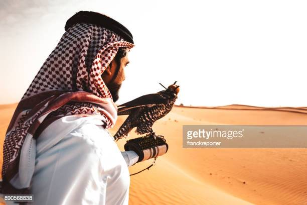 arabic man in the desert with a falcon - kaffiyeh stock pictures, royalty-free photos & images