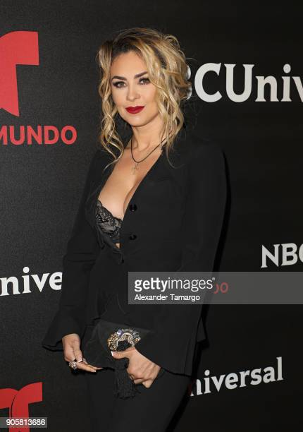 Aracely Arambula arrives at the Telemundo and NBC Universal Latin America NATPE Red Carpet Event at LIV at the Fontainebleau on January 16 2018 in...