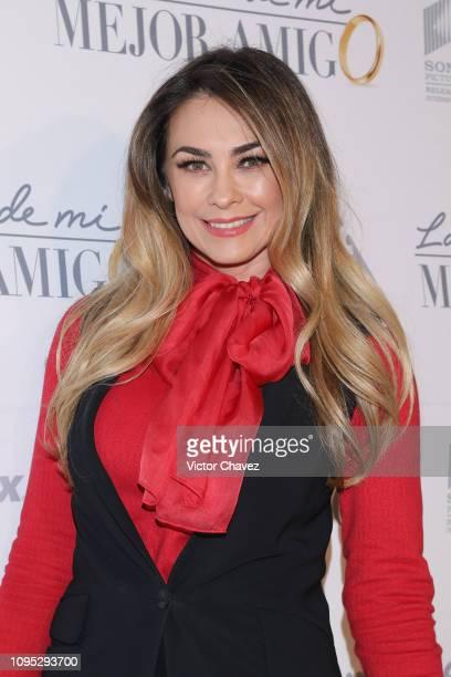 Aracely Arambula attends La Boda de Mi Mejor Amigo red carpet at Cinemex Antara Polanco on February 7 2019 in Mexico City Mexico