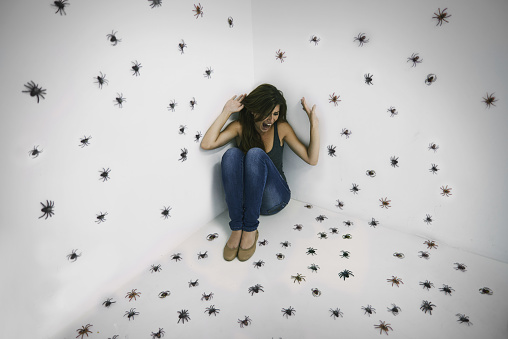 Arachnophobic's worst nightmare come true! 488026013