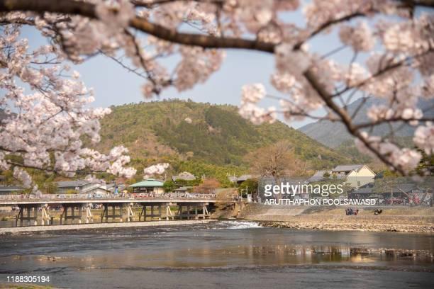 arashiyama with cherry blossom full bloom kyoto kansai japan - arashiyama stock pictures, royalty-free photos & images