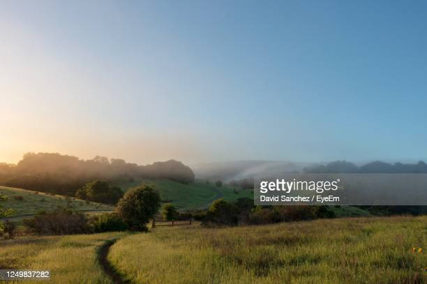 arastradero preserve, morning - palo alto stock pictures, royalty-free photos & images