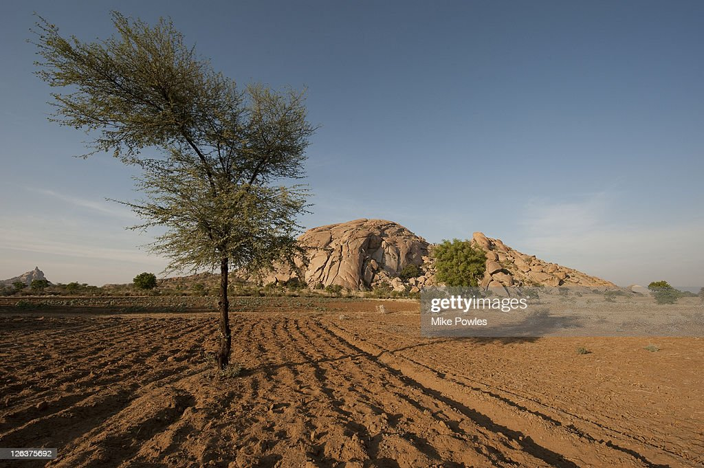 arable land in india