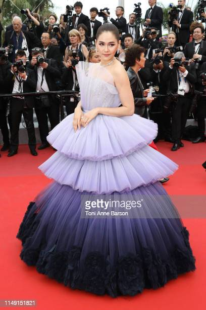 """Araya Hargate attends the opening ceremony and screening of """"The Dead Don't Die"""" during the 72nd annual Cannes Film Festival on May 14, 2019 in..."""