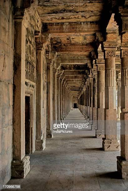 Arcade behind Hoshang Shah's Tomb, Mandu, Madhya Pradesh, India.