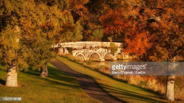 arch bridge over river during autumn - kildare stock photos and pictures