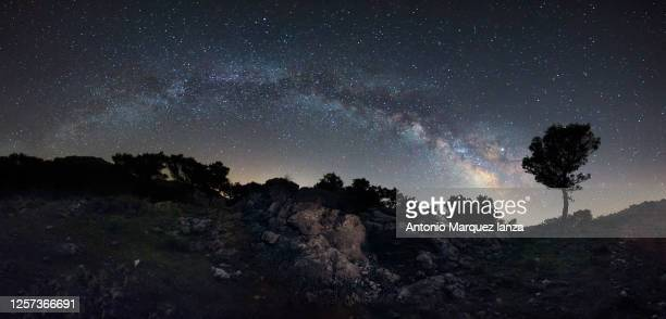 arch of the milky way with pine from high mountain - meteor stock pictures, royalty-free photos & images