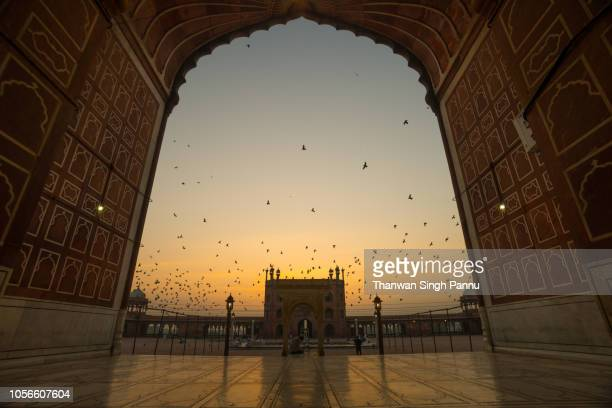 arch - jama masjid delhi stock pictures, royalty-free photos & images