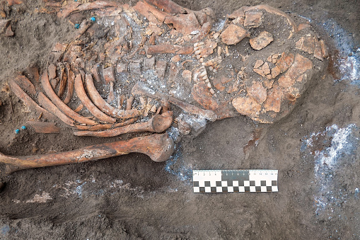 Archaeological excavations and finds (bones of a skeleton in a human burial),  working tool, ruler, arrow direction north, a detail of ancient research, prehistory. 1067550508