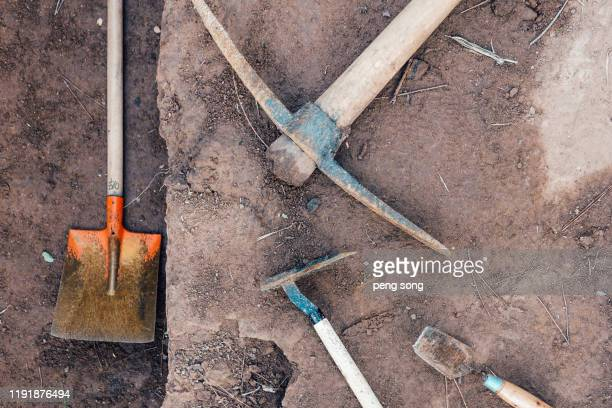 archaeological excavations - palaeontology stock pictures, royalty-free photos & images