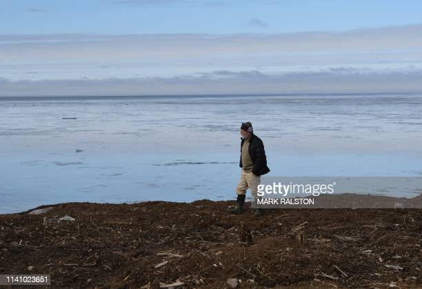 Archaeologist Rick Knecht at the excavation site beside the Bering Sea where he is searching for Yupik Eskimo artifacts, near the town of Quinhagak...