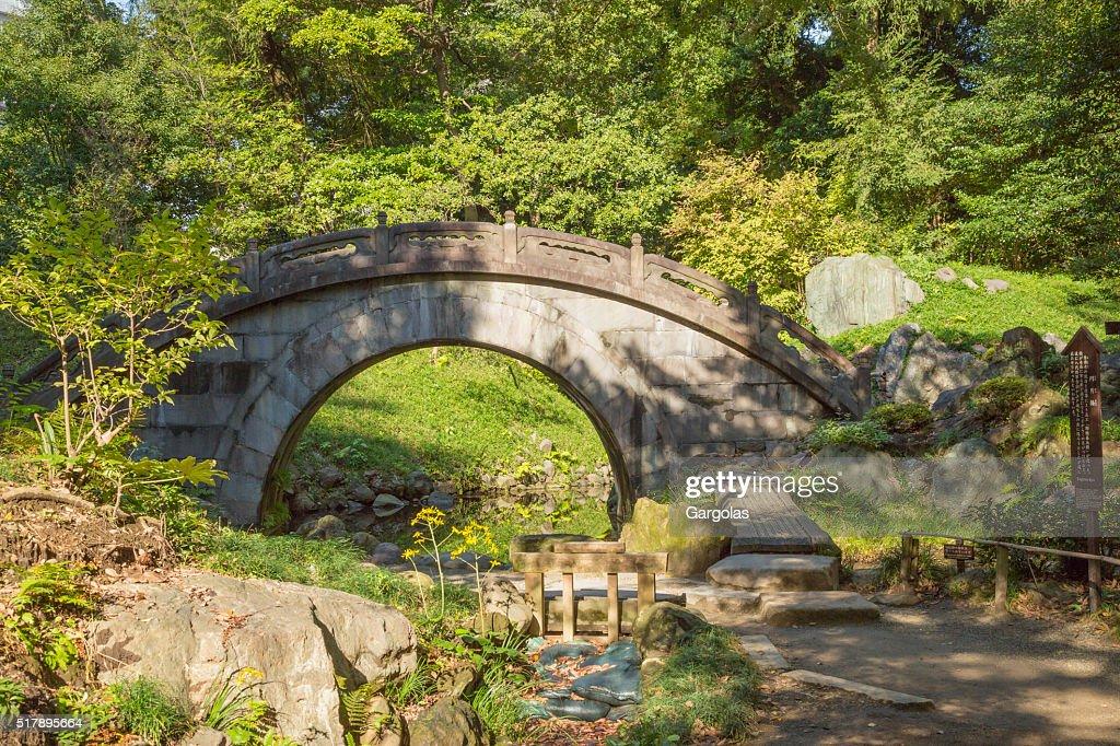 arched stone bridge in japanese garden koishikawa korakuen tokyo stock photo - Japanese Garden Stone Bridge