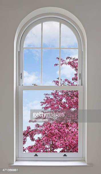 arched window and cherry blossoms