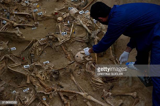 Archeologist and historian Jesus Roman works on human remains in the bottom of a mass grave at the San Roque cemetery in Puerto Real near Cadiz on...