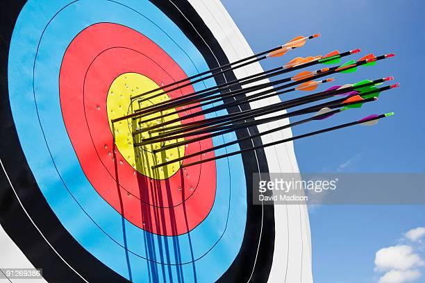 Archery arrows in target