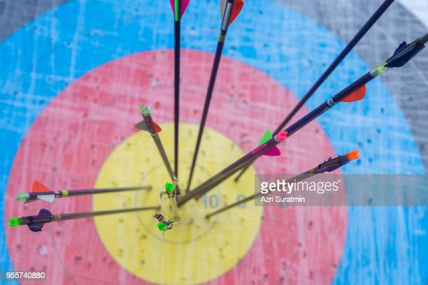 archery target with arrows on it. success concept - archery stock pictures, royalty-free photos & images
