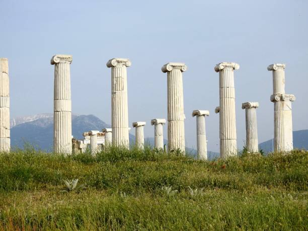 Architectural Columns On Grassy Land Against Clear Sky