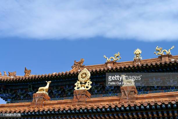 architectural detail of brick wall and dragon roof at hohhot, west china - hohhot - fotografias e filmes do acervo