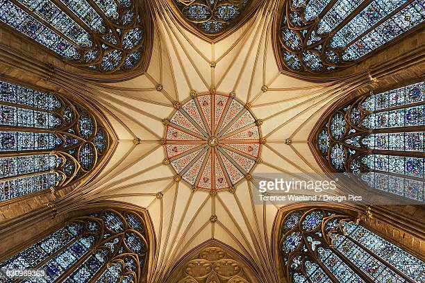 architectural detail of york minster ceiling - terence waeland stock pictures, royalty-free photos & images