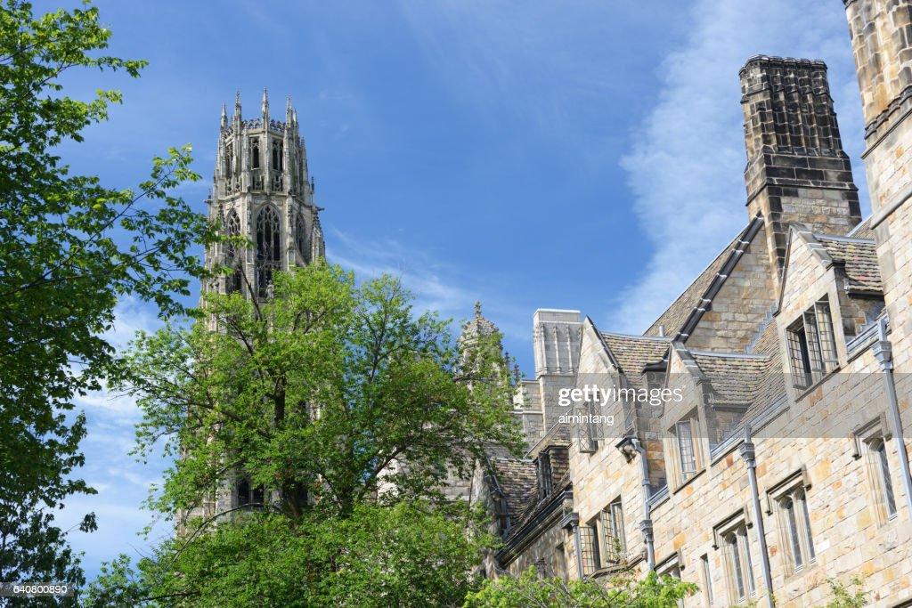 Architecture in Yale University : Stock Photo