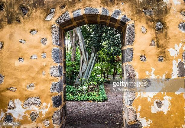 Archway, botanical gardens, Puerto de la Cruz