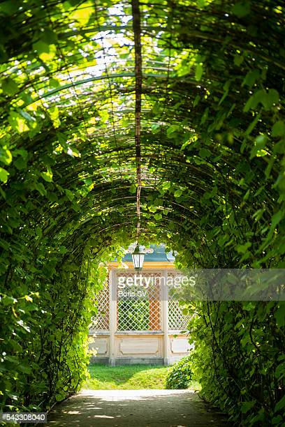 Archway in Rundale Palace Park, Latvia, leading to garden alcove