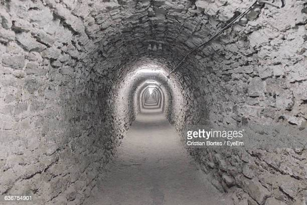archway in salina turda - bortes foto e immagini stock