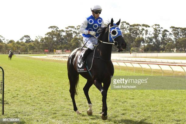 Archway to Heaven ridden by Stan Tsaikos goes out for the Save The Date Sun Oct 21st 0 58 Handicap at Horsham Racecourse on May 05 2018 in Horsham...