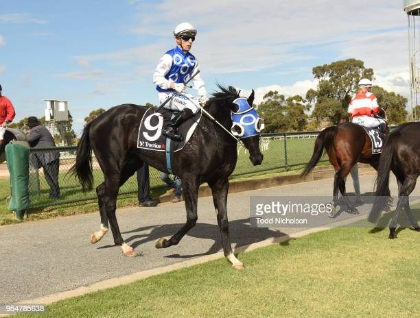 Archway to Heaven ridden by Stan Tsaikos returns after the Save The Date Sun Oct 21st 0 58 Handicap at Horsham Racecourse on May 05 2018 in Horsham...
